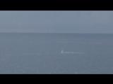 Ничего необычного - просто море и дельфины... во время пробежки (Адлер)