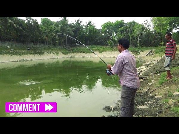 Big Catla Fish Hunting By Sumon From Pond Of Rajshahi
