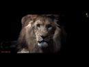 F.G. Noise - Rave Division (Original Mix) Trance All Stars [Promo Video]