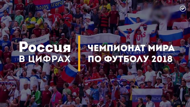 Чемпионат мира по футболу в цифрах