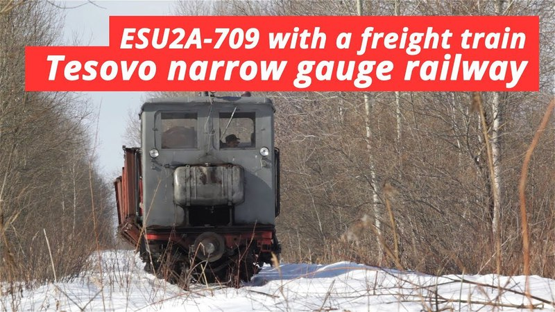 [TPR] ESU2A-709 with a freight train (peat transportation)