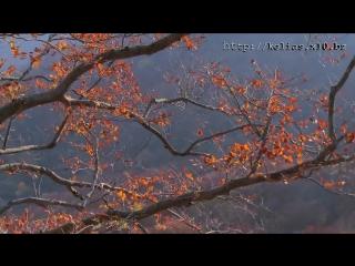 Христианская песня - Ты Бог Всемогущий (1)