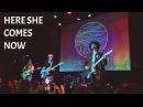 Calpurnia - Here She Comes Now (The Velvet Underground cover)