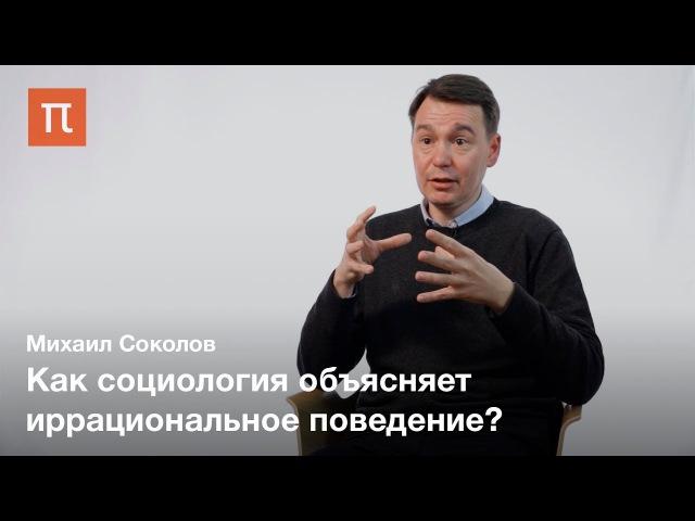 Множественные «я» — Михаил Соколов