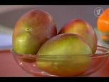Что за фрукт манго, как его есть, польза и вред для организма