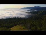 Видео к сериалу Гримм (2011  2017) Промо-трейлер  (сезон 1)