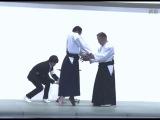 達人の合気を比較 大東流 合気会 養神館の合気上げ Daito ryu Aikikai Yoshinkan[Aiki comparison]