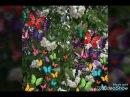 ВЕСНА ПРИРОДА ДЕРЕВЬЯ ЦВЕТУТ SPRING OF THE NATURE OF THE TREES OF FLOWERS