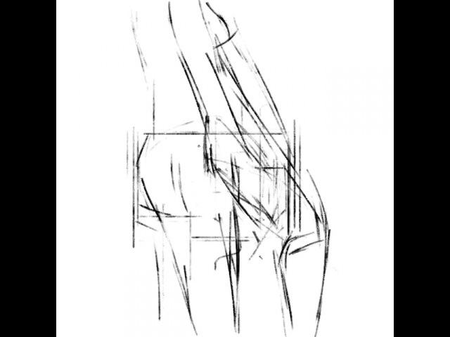 Sketch_of_body