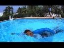 Плавание кролем на груди как должна двигаться голова при осуществлении дыхания