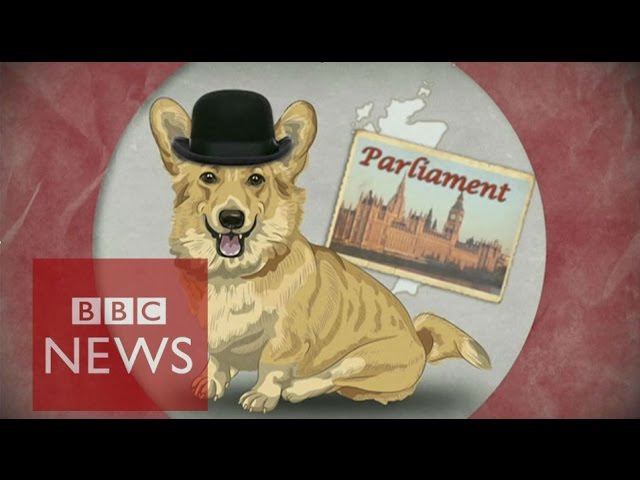 UK election A guide for non-Brits - BBC News