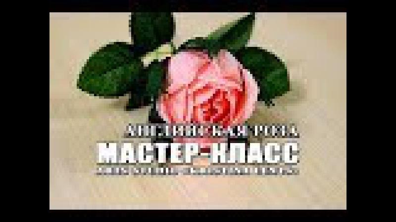 Мастер класс Английская роза из гофрированной бумаги с конфетой внутри