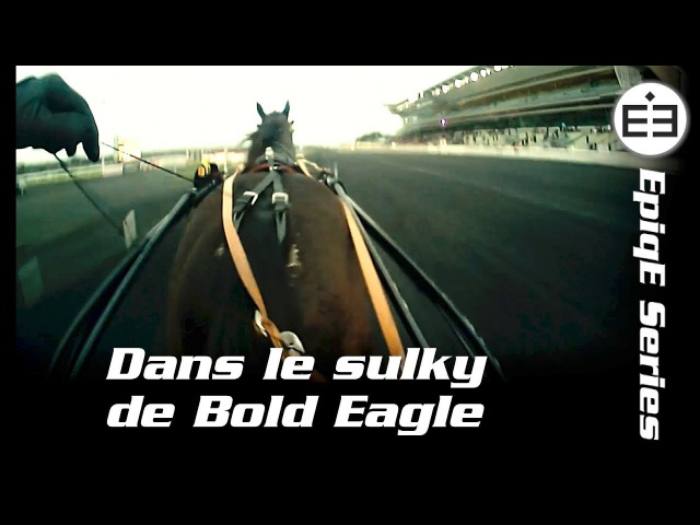 Dans le sulky de Bold Eagle