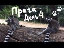 Евротрип 5. Пражский зоопарк | Eurotrip 5. Zoopraha