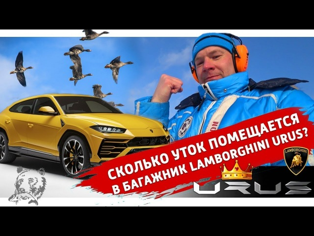 Обзор Lamborghini Urus от Охотника. Как стрелять на Стенде. Ищем Ружья на Выставке в Москве?