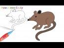 Rat Drawing Coloring - Watch Video- dtzlR8xc8Qc