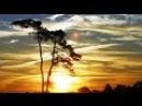 Безумно красивый клип Природа и шикарная музыка