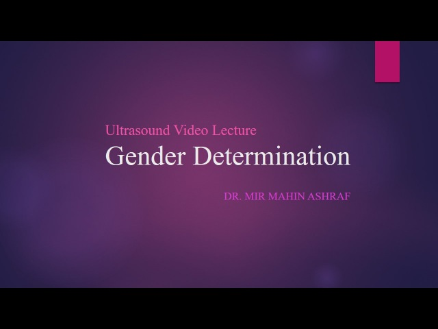 Ultrasound Lecture: Gender Determination by Dr. Mahin