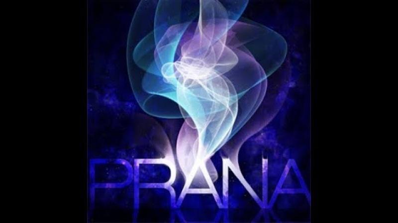 Что такое Прана?