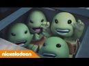 Черепашки-ниндзя | Самые милые черепашки | Nickelodeon Россия