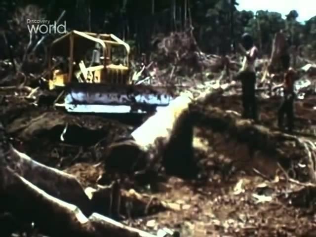 Discovery Рудник Грасберг Grasberg Mine