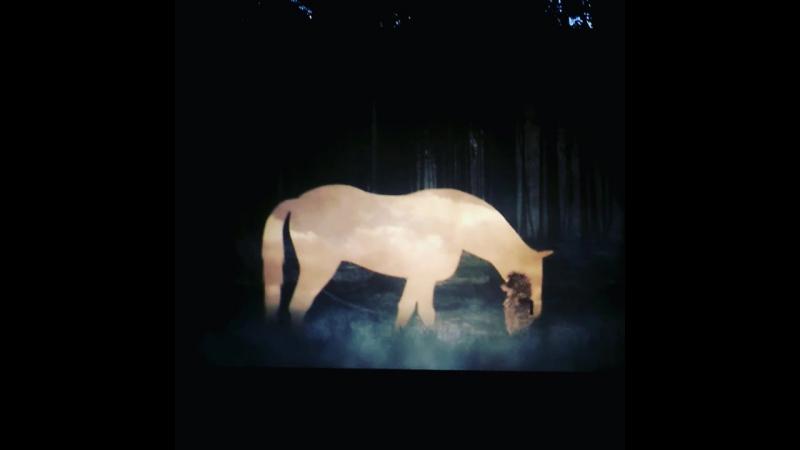 Интересно, лошадь не захлебнется в тумане?