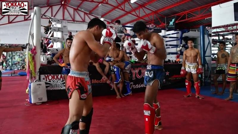 Muay Thai Stars Sparring at YOKKAO