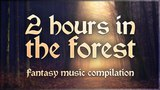 Two hours in the Forest, Celtic fantasy folk music.