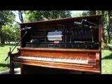 Aphex Twin - Aisatsana - Player Piano (2)
