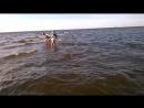 прогулка по воде