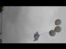 Запуск шаров с голубем в память о Беслане.