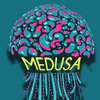 Интеллектуальный проект Medusa