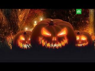 Ужасы Хеллоуина: откуда пошел самый мистический из всех праздников