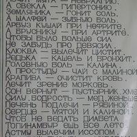 Анкета Дмитрий Арланов