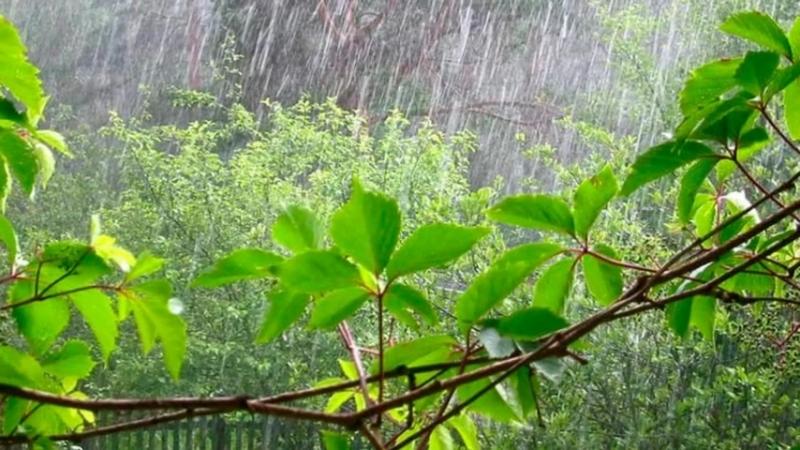 Фото-клип Вальс дождя. Автор музыкальной композиции Фридерик Шопен, автор и дизайнер фото-клипа Ольга Киселёва.