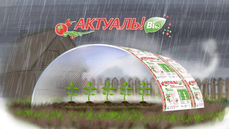 Ролик АКТУАЛЬ!Bio (анимация)