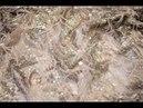Роскошная ткань с перьями и пайетками для вечернего платья принцессы
