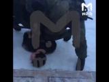 Видео задержания ученика, напавшего на школу в Бурятии [NR]