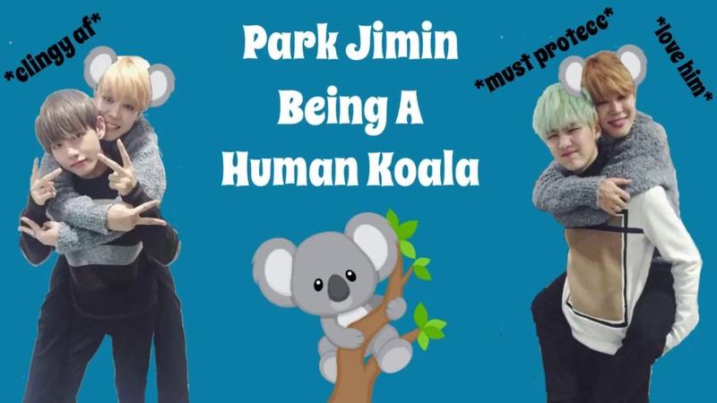 Park Jimin Being A Koala Compilation