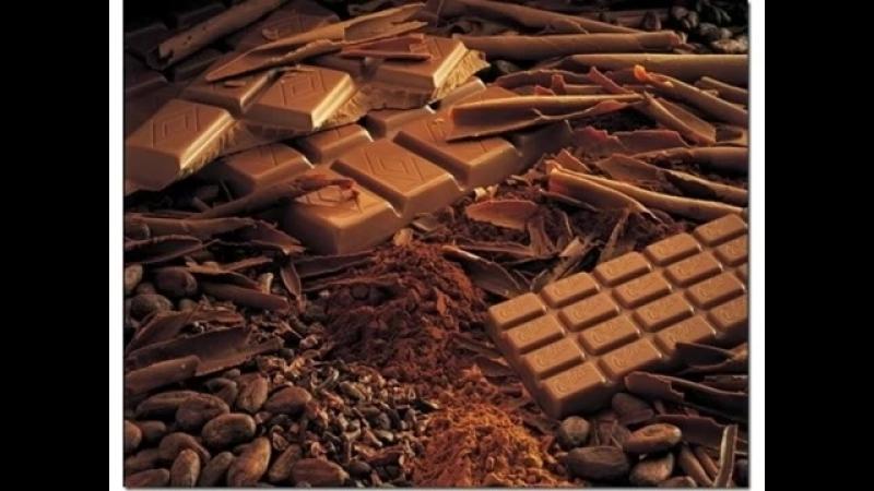 Шоколад самая полезная сладость диетолог Алексей Владимирович Ковальков