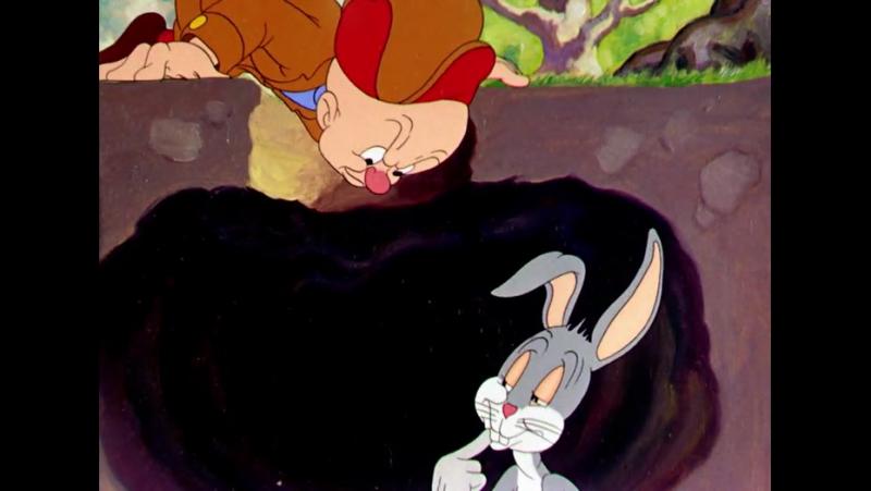WWW.DANIMADOS.COM V2D1E01 - 1940 - A Wild Hare