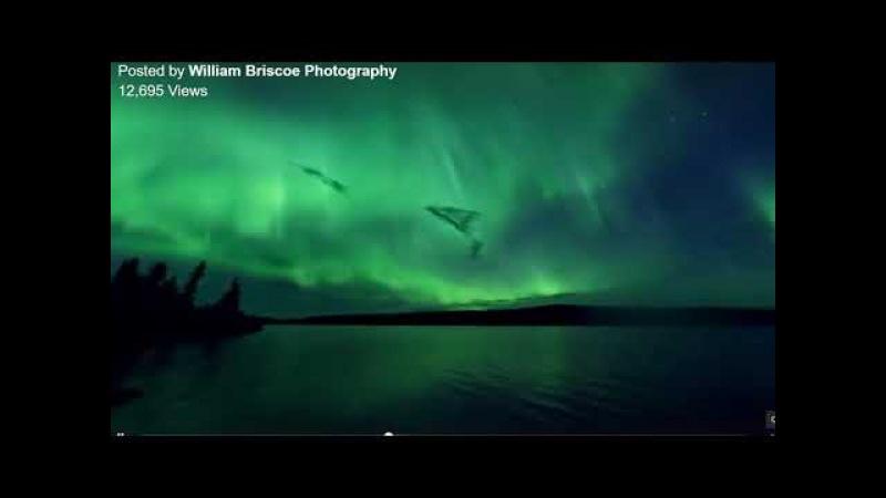 Aurora Convergence Shows LSC Concave Earth