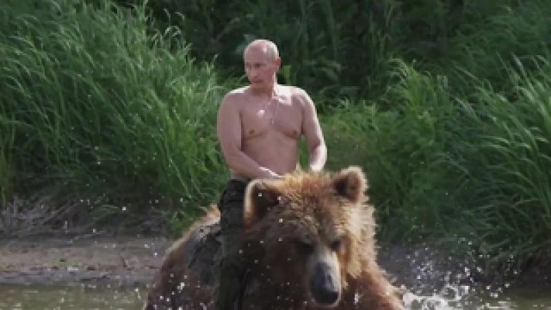 Putin em cima de um Urso (Video 100% Verídico!)