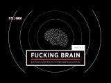 Fucking Brain. Часть V. Большая дерзость профессора Анохина