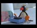 Pingouin boum boum tam tam. Tu va rire