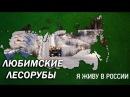 Любимские лесорубы Проект Я живу в России