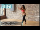 Belly Dance Fitness Calorie Burn - Shimmy Challenge