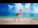 Арфа Шум волн Далёкие дали Positive Energy Relax Music