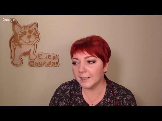 Видео курс Медвежонок! Сухое валяние шерсти. Елена Смирнова техника по валянию