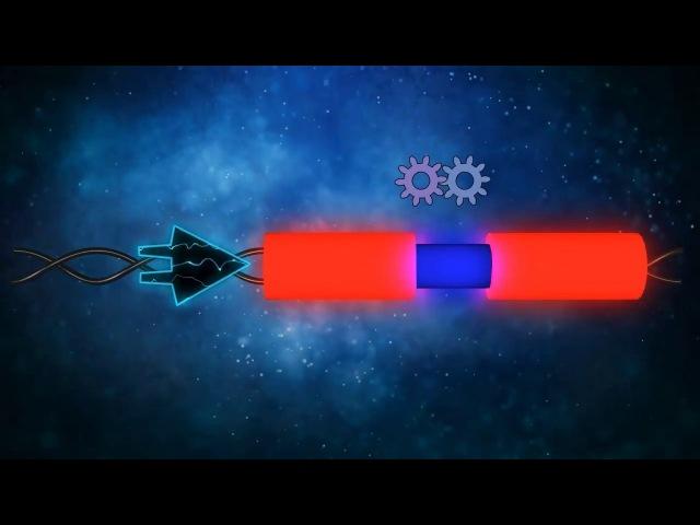 Научно-популярный видео-ролик о молекулярно-генетических исследованиях, проводимых в ЛЯП ОИЯИ